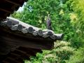 京都青莲院门迹