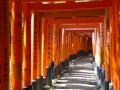 京都伏见稻荷大社的千本鸟居