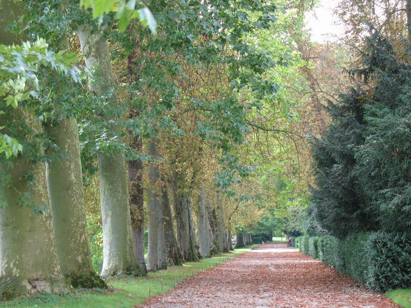 05_Fontainebleau1.jpg
